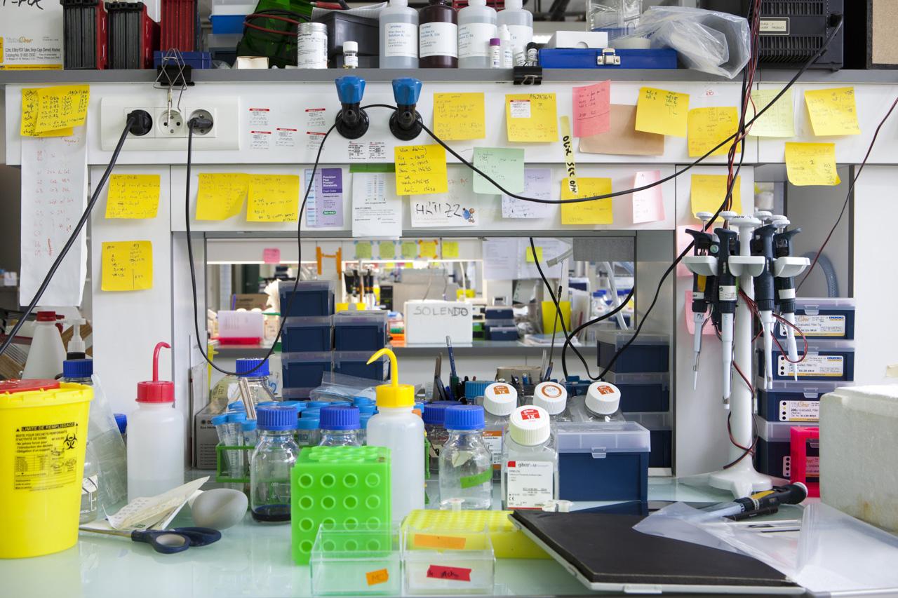 laboratoires inserm _ lyon